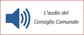 Audio Consiglio comunale